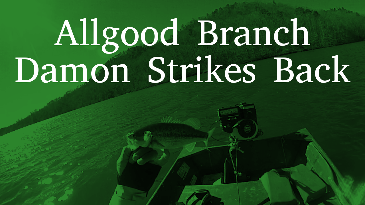 Allgood Branch | Damon Strikes Back!