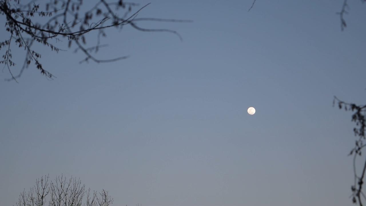 Full Moon Fishing